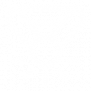 Legacy Medal Icon